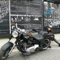 Fat Boy Lo Harley-Davidson on MOTORESS
