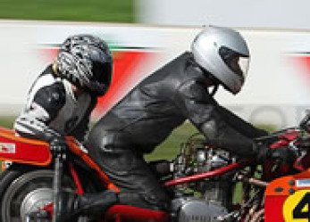 Motorcycle Sidecar Monkey Business