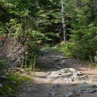 Misery Bay Hiking Trail