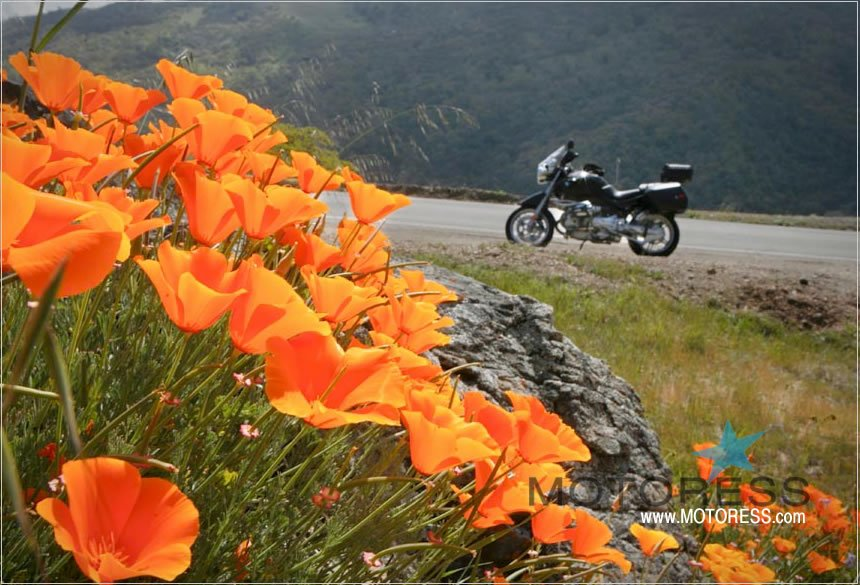 Best Ride Ready Tips to Start Your Motorcycle Riding Season Right - MOTORESS
