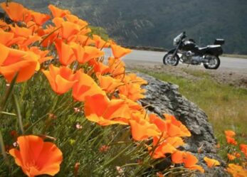Best Ride Ready Tips to Start Your Motorcycle Riding Season Right