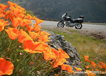 Motorcycle Ride Ready Tips to Start Your Motorcycle Season Right