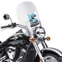 2016 International Female Ride Day Windscreen Flyer