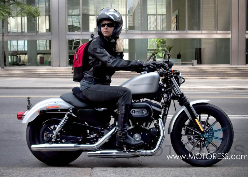 Harley-Davidson Sportster 883 on MOTORESS