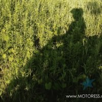 Shadow Riding on the MBSR