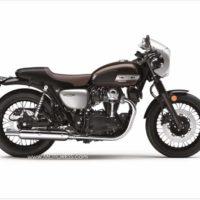 Kawasaki W800 Cafe Motorcycle Throwback to 1960s Original - MOTORESS Vicki Gray
